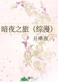 暗夜之旅(綜漫)