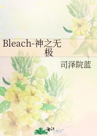 Bleach-神之無極