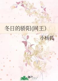 冬日的驕陽(網王)