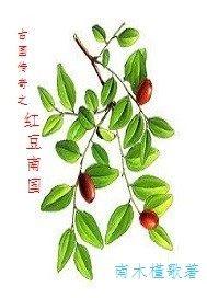 古國傳奇之紅豆南國