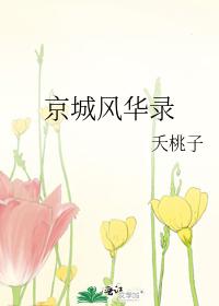 京城風華錄