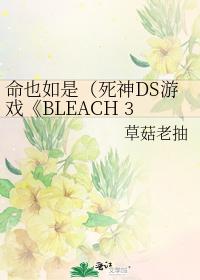 命也如是(死神DS遊戲《BLEACH 3rd Phantom》同人)