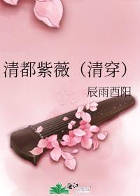 清都紫薇(清穿)