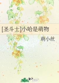 [聖鬥士]小哈是萌物