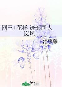 網王+花樣 跡部同人 嵐風