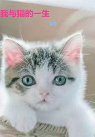 我與貓的一生