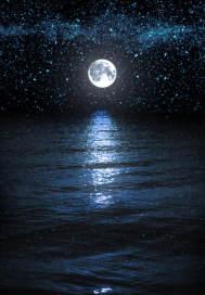 真夏夜之星