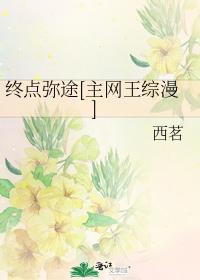 終點彌途[主網王綜漫]